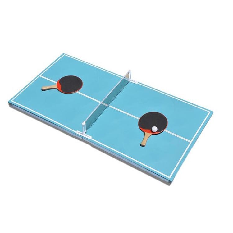 Floating Pool Pong Game